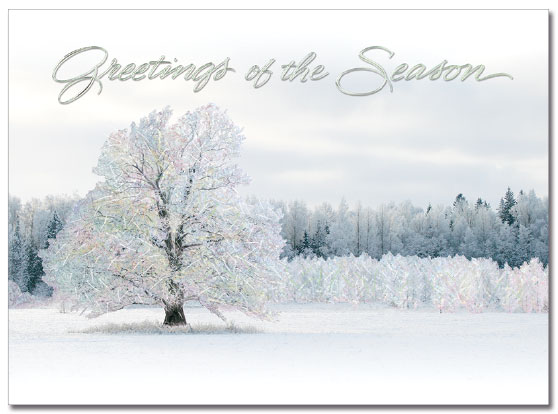 Serene Winter Greetings
