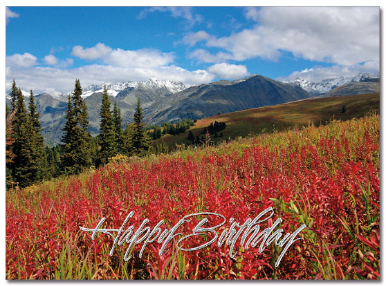 Scenic Birthday Card | Cardplant