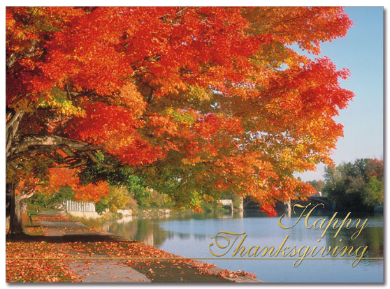 Autumn Trails Card
